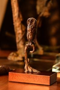 Bronze Owl,Bronze,stephenRautenbach