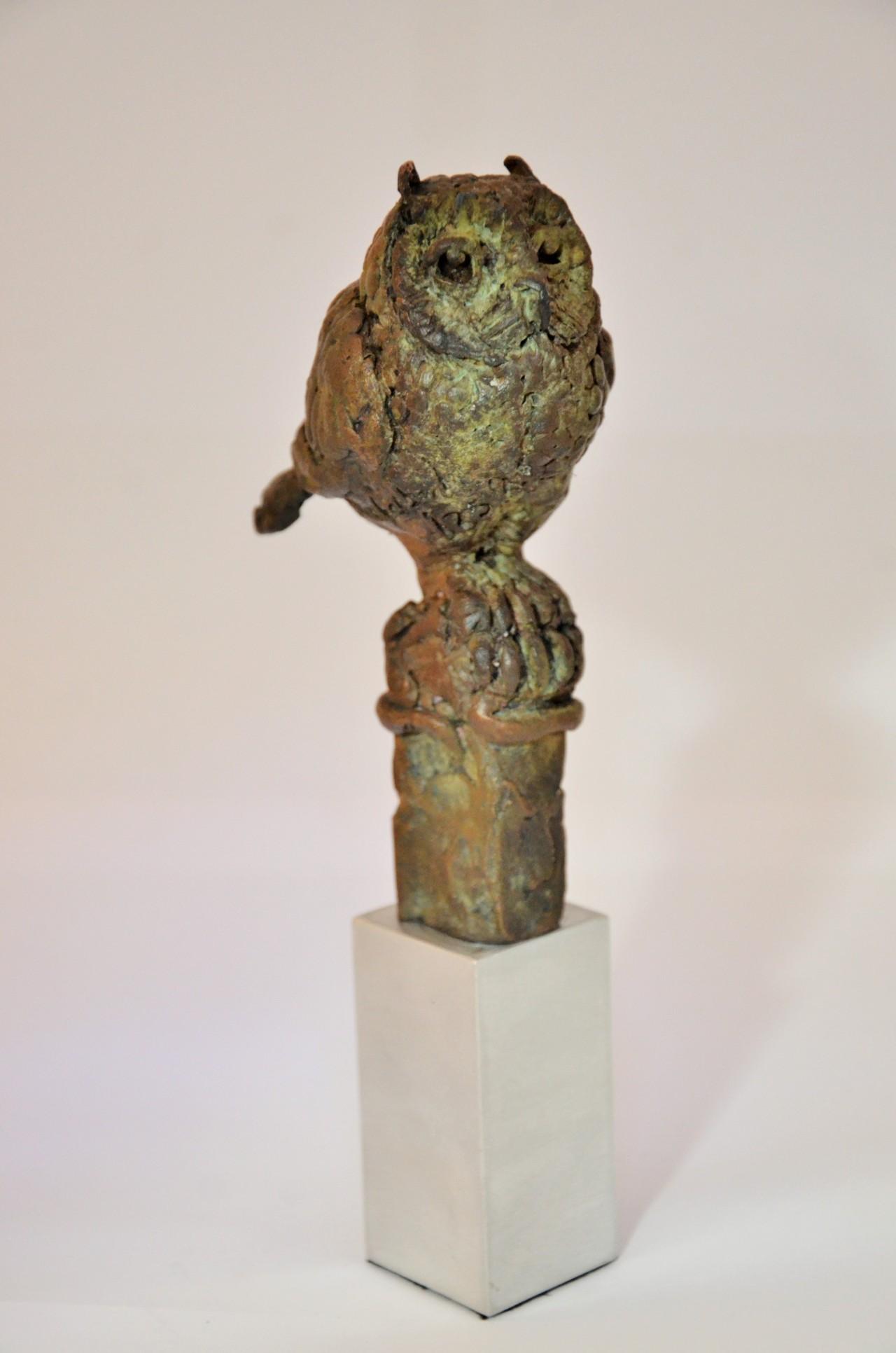 Horned Eagle Owl