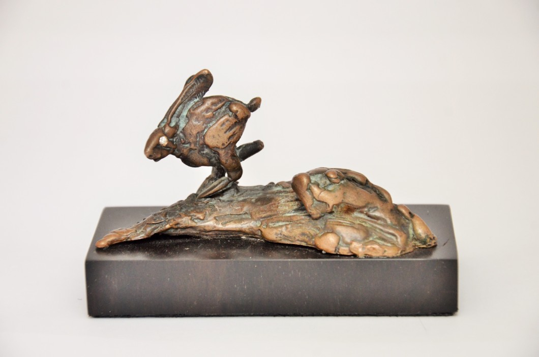 Little Sprinting Hare